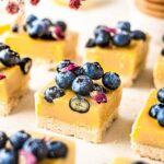 Vegan Blueberry Lemon Bars