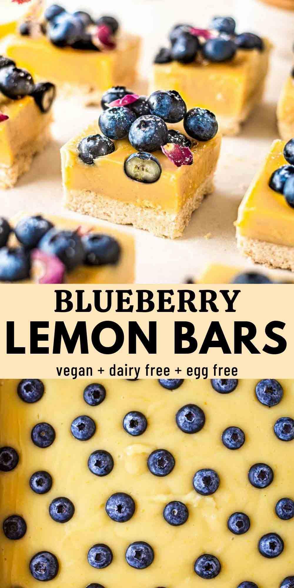 Vegan Blueberry Lemon Bars
