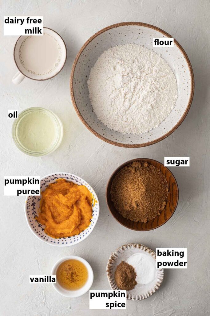 Flatlay of ingredients for vegan pumpkin donuts.